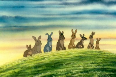Watership Down | Film Viewing @ Boardroom, DIGHR Offices