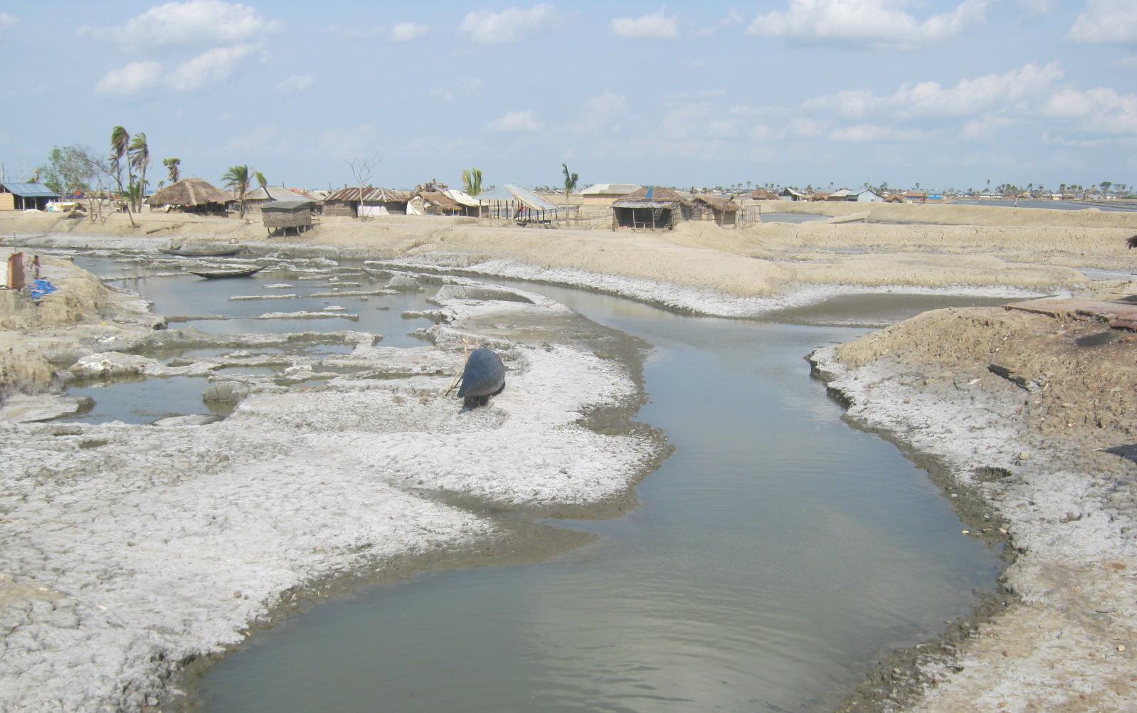 Coastal Bangladesh after cyclone
