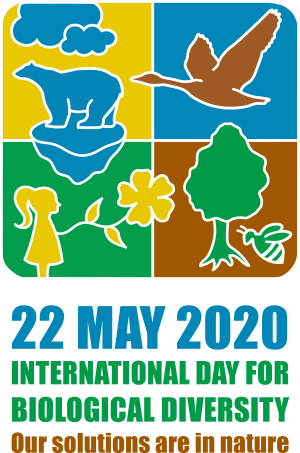 International Day for Biological Diversity logo